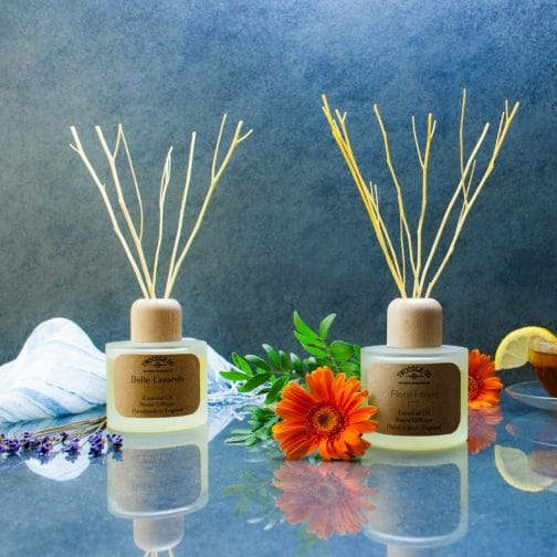 100 Natural Room Diffuser by Twoodle Co Natural Home Scents 2