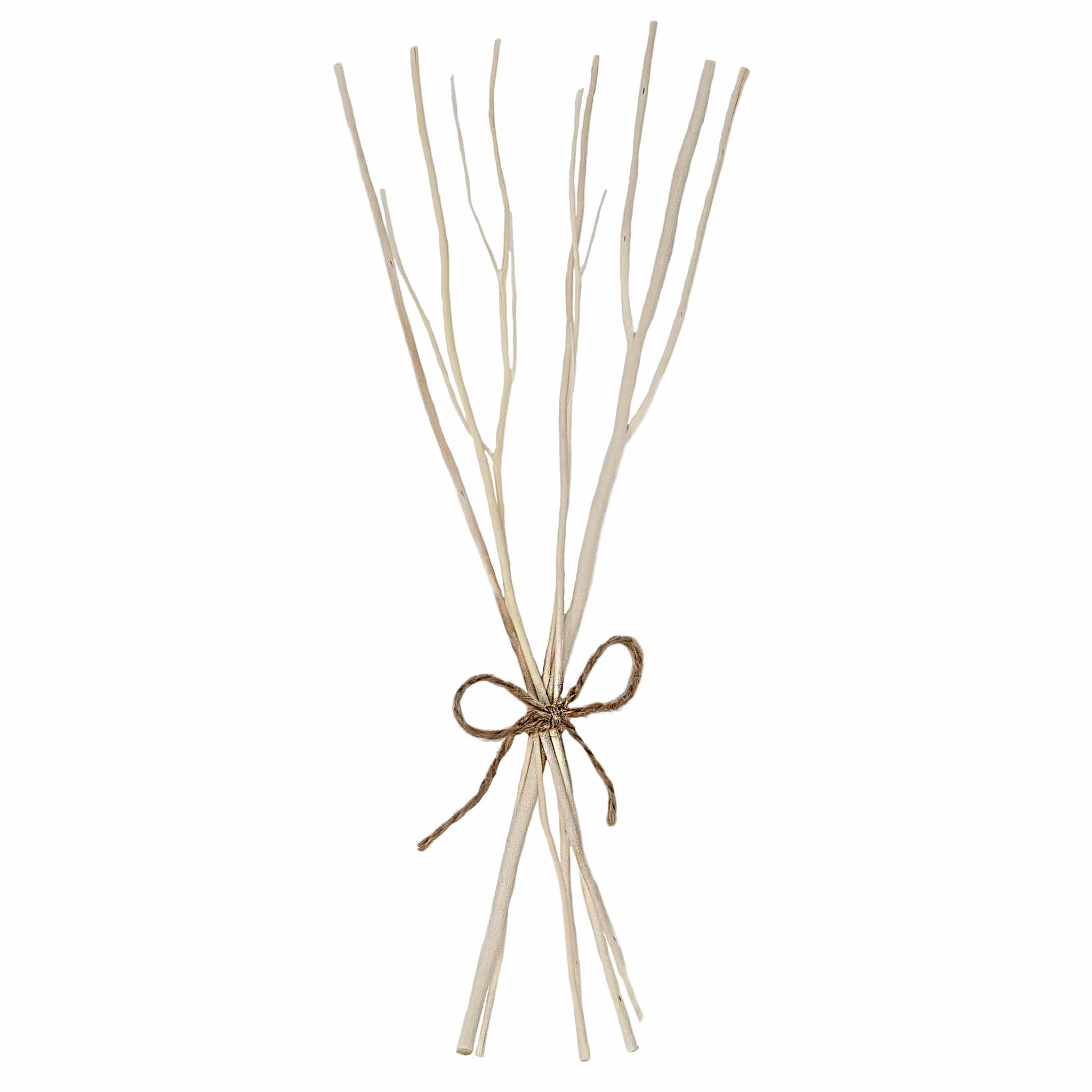 Room Diffuser replacemnt twigs reeds by Twoodle Co Natural Home Scents