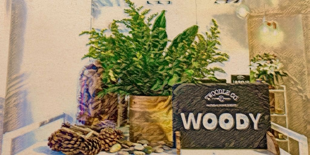 Shop by scent type woody Twoodle Co Natural Home Scents